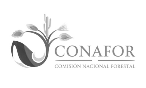 Logo: CONAFOR, Mexico's National Forestry Commission