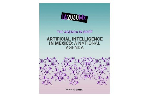 IA2030MX - The Agenda In Brief